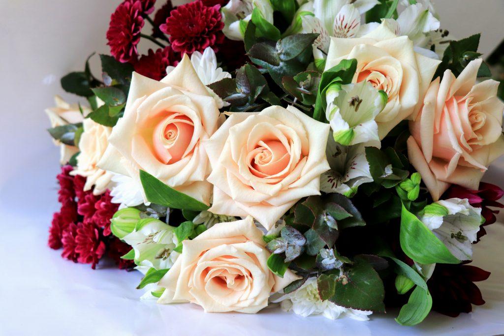 #sahara #roses