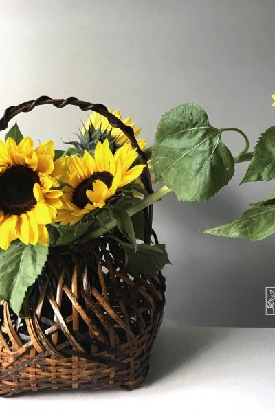What's Special About Sunflowers – Meaning, Arrangement Ideas and Care Tips