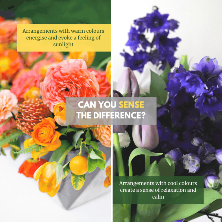 Warm and cool colours in flower arrangements